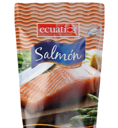 Imagen de ECUATICS SALMON 454 GR